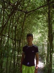 Арка-туннель