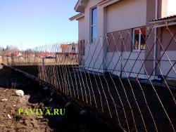 Живой забор для дачи
