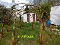 Беседка садовая живая