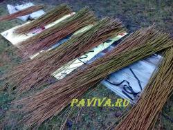 купить лозу для плетения в спб