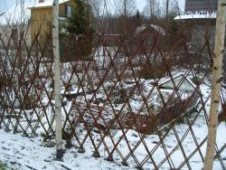 Изгородь зимой