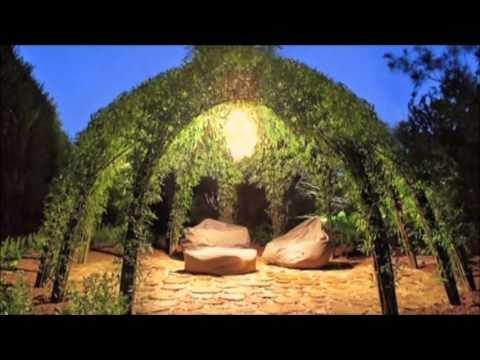 Живой купол