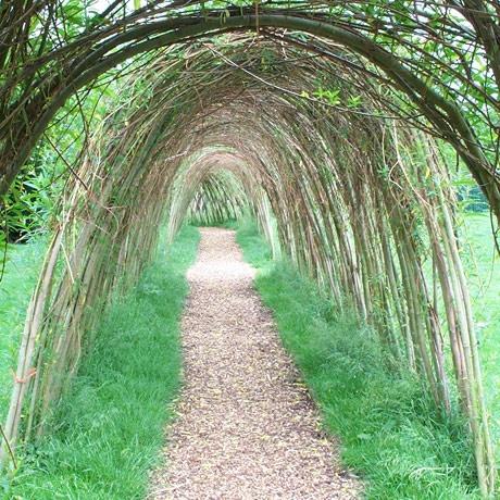 Живой туннель в спб