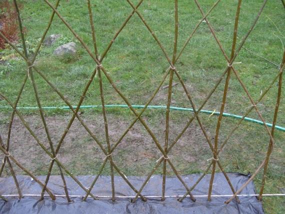 Зелёный забор живая изгородь