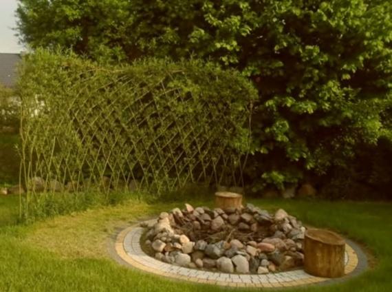 Забор или живая перегородка