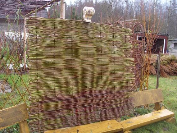 Плетень в рамке