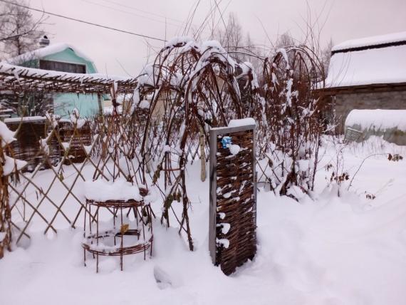 Живая беседка зимой