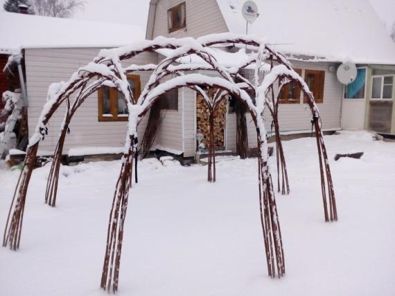 Живая беседка под снегом