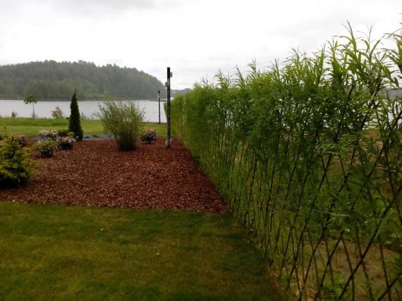 Купить изгородь в спб