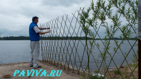 Деревянный забор для дачи