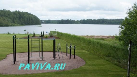 дизайн вертикального озеленения