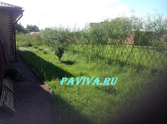 участки сада и огорода фото