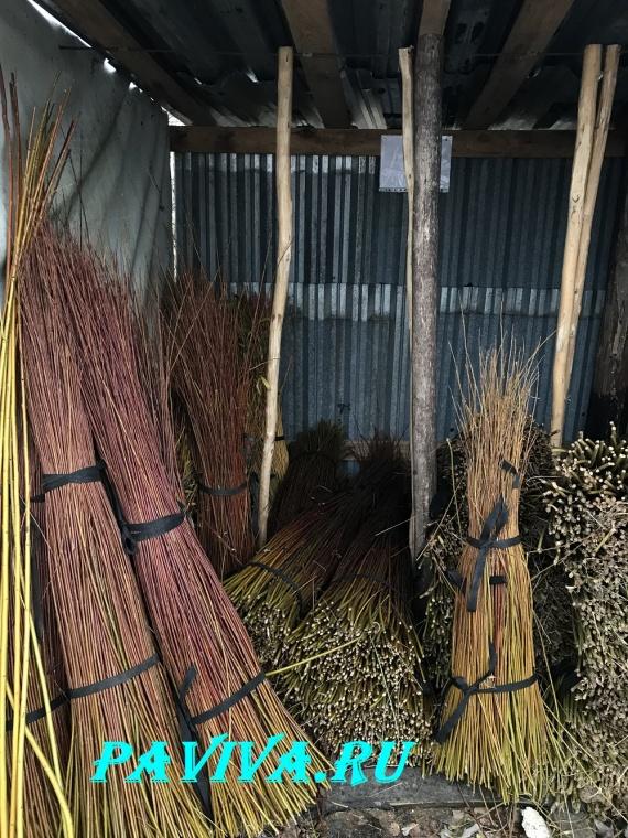 лоза для плетения корзин