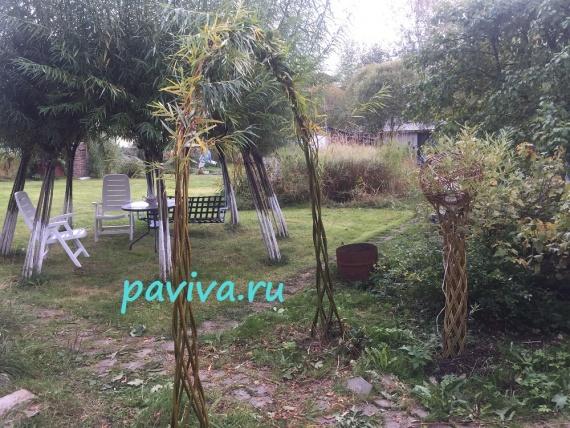 проектирование садовых участков живыми конструкциями из ивы