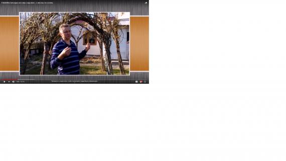 Беседка из ивы видео легко посадить