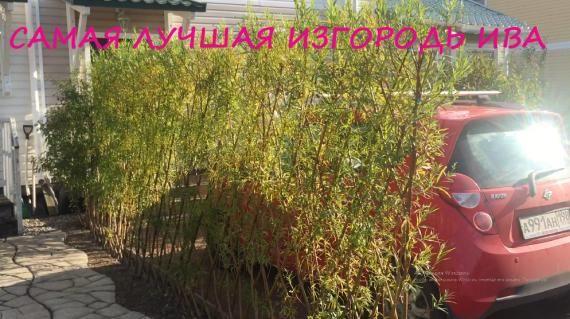 удобрения для сада и огорода магазин